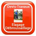 DEVIS-TRAVAUX-GRATUITS-Elagage - Débroussaillage Devis Services