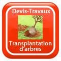 DEVIS-TRAVAUX-GRATUITS-Transplantation Devis Services