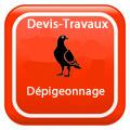devis-travaux-Dépigeonnage-RENNES Devis Services