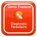 devis-travaux-Diagnostic Diagnostic parasitaire termites, merules, charançons