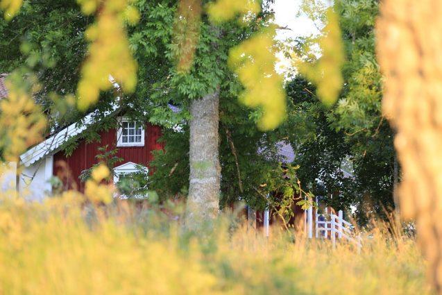 Focus sur la souscription à une assurance habitation